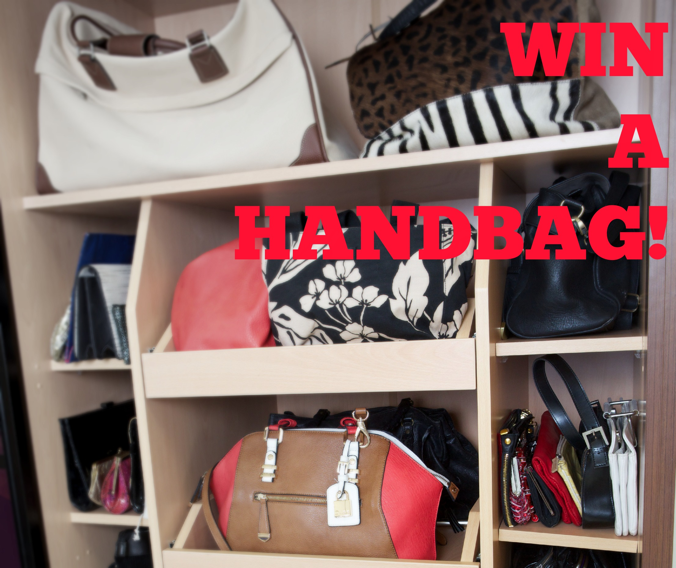 Win a handbag competition